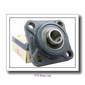 FYH NANFL205-15 bearing units