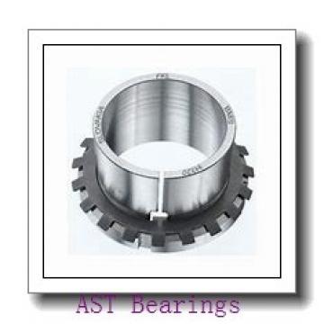 AST AST800 3025 plain bearings